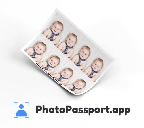 How PhotoPassport.app works